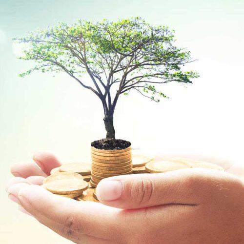 FAQ Investment