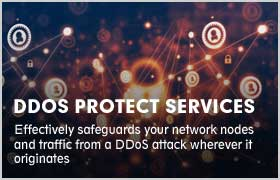 DDOS PROTECT SERVICES