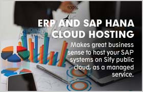 ERP-AND-SAP-HANA-CLOUD-HOSTING
