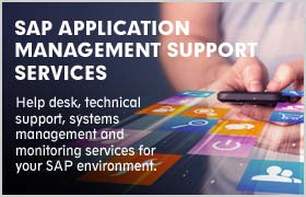 SAP APPLICATION MANAGEMENT SUPPORT SERVICES